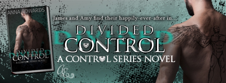 divided-control-fb-cover-v1